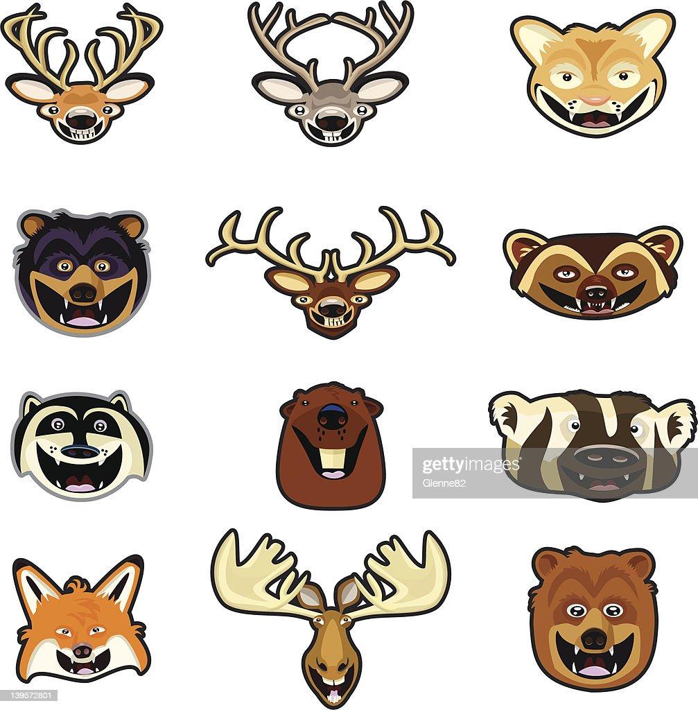 Animal Heads of North America