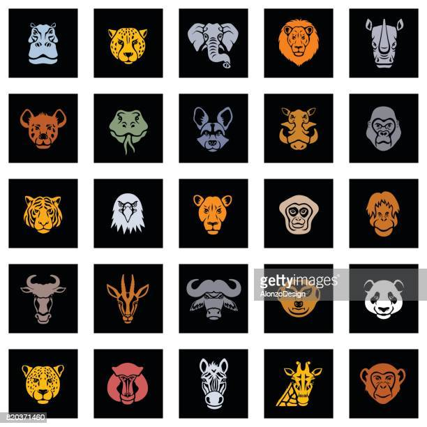animal icon faces - african buffalo stock illustrations, clip art, cartoons, & icons
