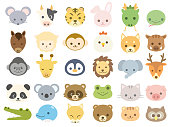 Animal icon1