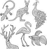 Animal illustration.