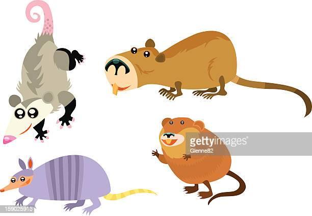 illustrazioni stock, clip art, cartoni animati e icone di tendenza di pagina di animale - opossum