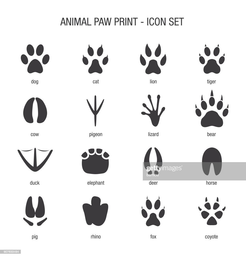 Animal Paw Print Icon Set