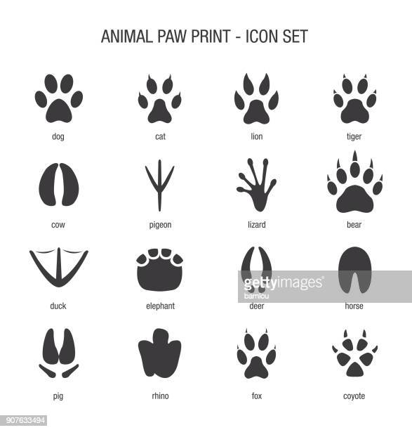 illustrazioni stock, clip art, cartoni animati e icone di tendenza di animal paw print icon set - animal