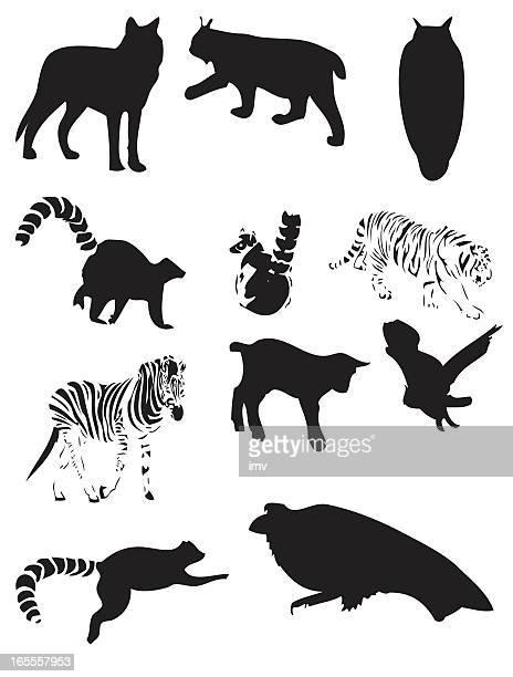 animal silhouettes - lemur stock illustrations, clip art, cartoons, & icons