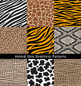 Animal skin seamless patterns vector illustrations.