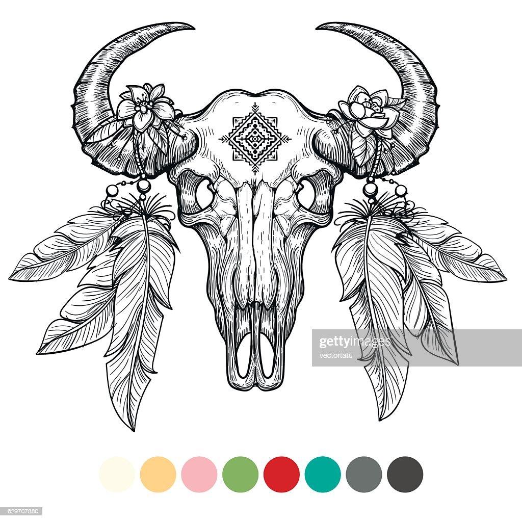 Animal skull coloring design