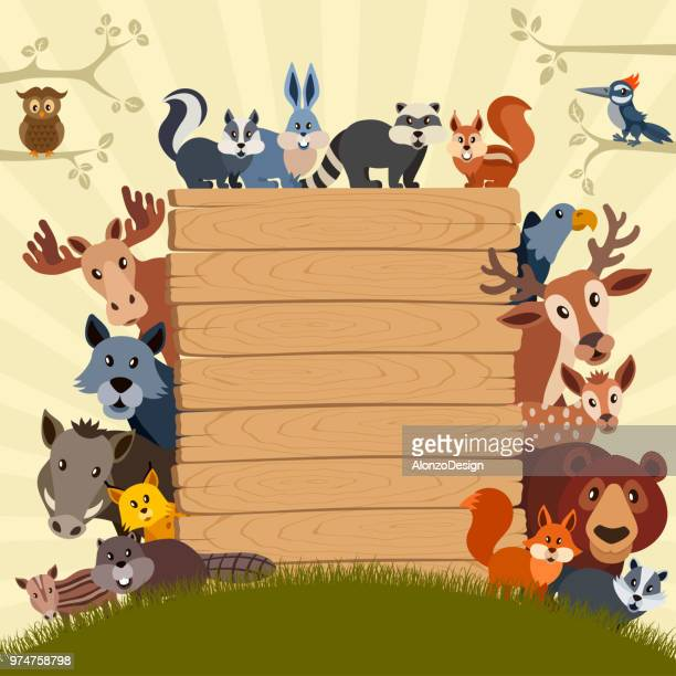 animal theme birthday party invitation - animal stock illustrations