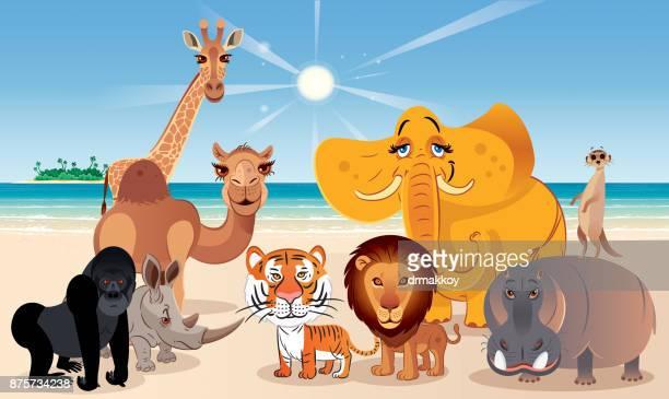 ilustrações, clipart, desenhos animados e ícones de animais e praia - zoologia