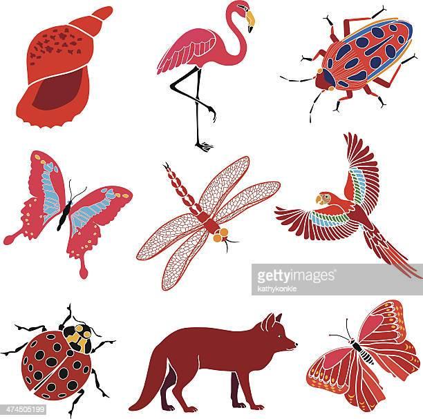 Animais e insetos tema vermelho