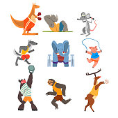 Animals doing exercise, kangaroo, hippo, wolf, elephant, pig, bull, sloth and deer in the gym, fitness and healthy lifest.yle vector Illustrations on a white background