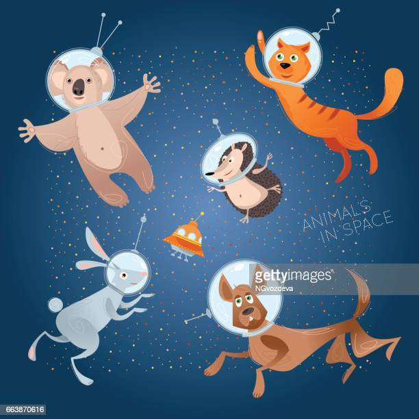 Animals in space. Astronauts. Cosmonauts. Dog, cat, hare, hedgehog, koala.