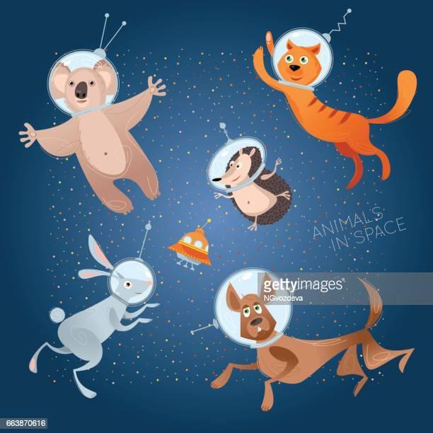 Tiere im Raum. Astronauten. Kosmonauten. Hund, Katze, Hase, Igel, Koala.