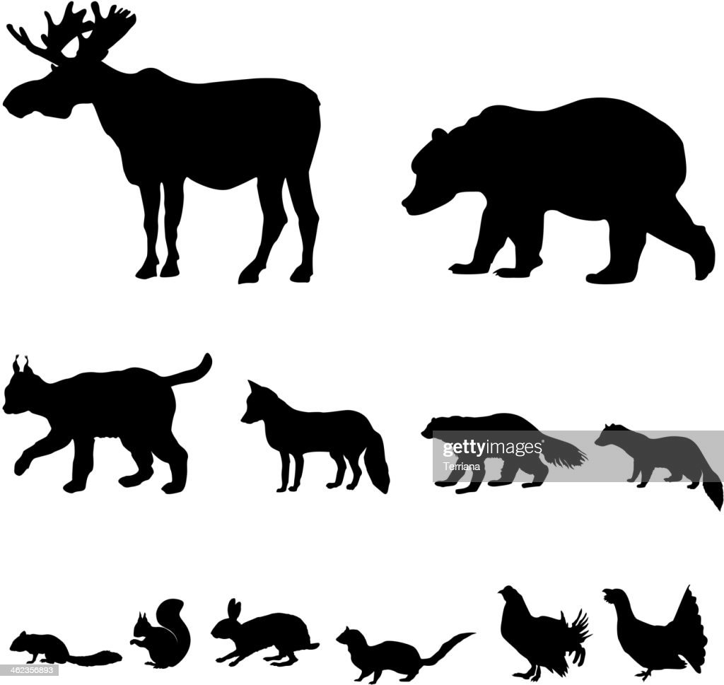 Animals living in taiga. Icons set.