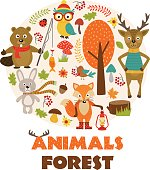 animals of forest part 2