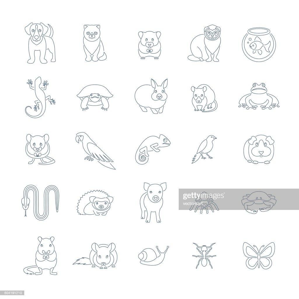 Animals pets vector flat thin line icons set