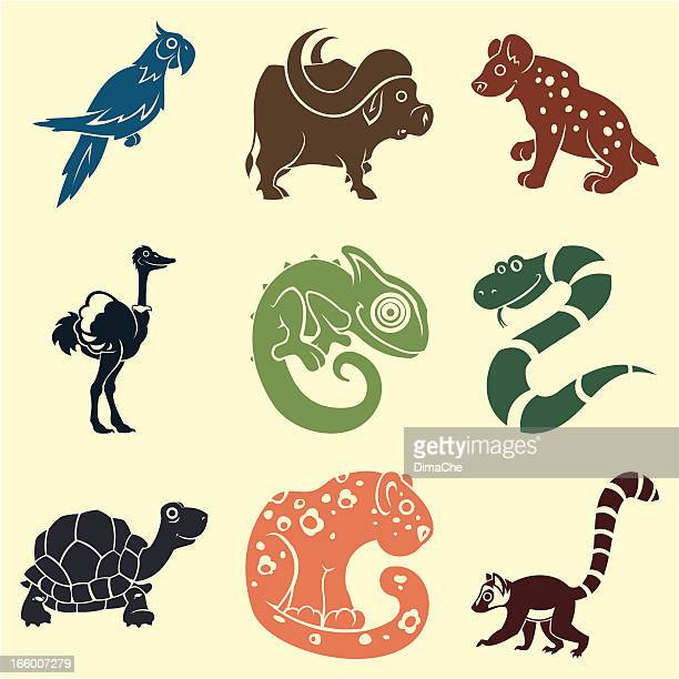 animals set - african buffalo stock illustrations, clip art, cartoons, & icons