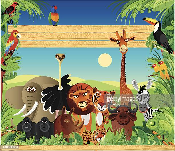 ilustraciones, imágenes clip art, dibujos animados e iconos de stock de los animales - biodiversidad