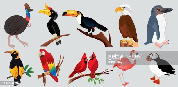 animals - bird stock illustrations
