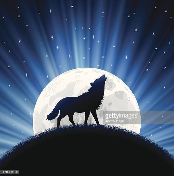 animated wolf howling with the moon behind him and stars - howling stock illustrations, clip art, cartoons, & icons