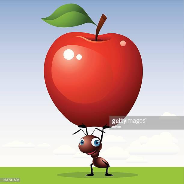 ilustraciones, imágenes clip art, dibujos animados e iconos de stock de hormiga de manzana - hormiga