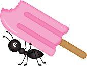 Ant Carrying Ice Cream Stick