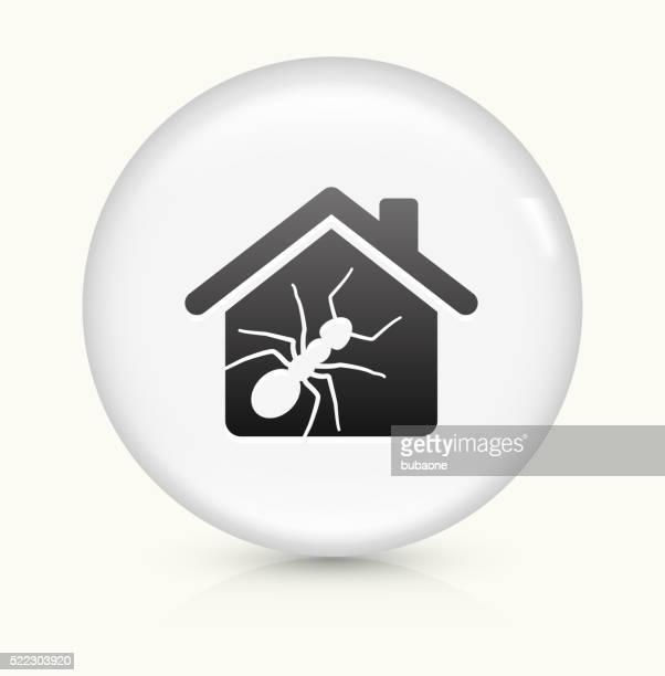 ant pests at home icon on white round vector button - pests stock illustrations