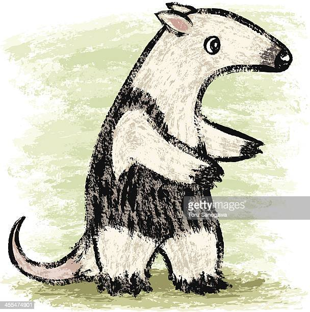 anteater - anteater stock illustrations