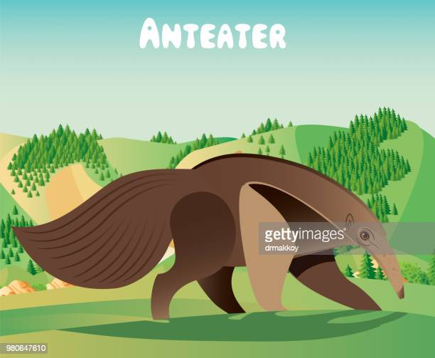 anteater - anteater tongue stock illustrations
