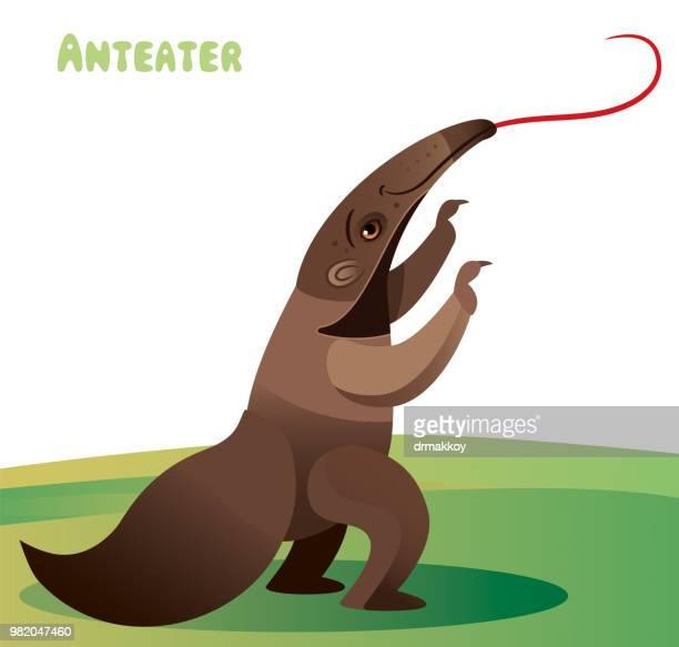 anteater - anteater stock illustrations