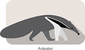 anteater walking and seaching, side view vector