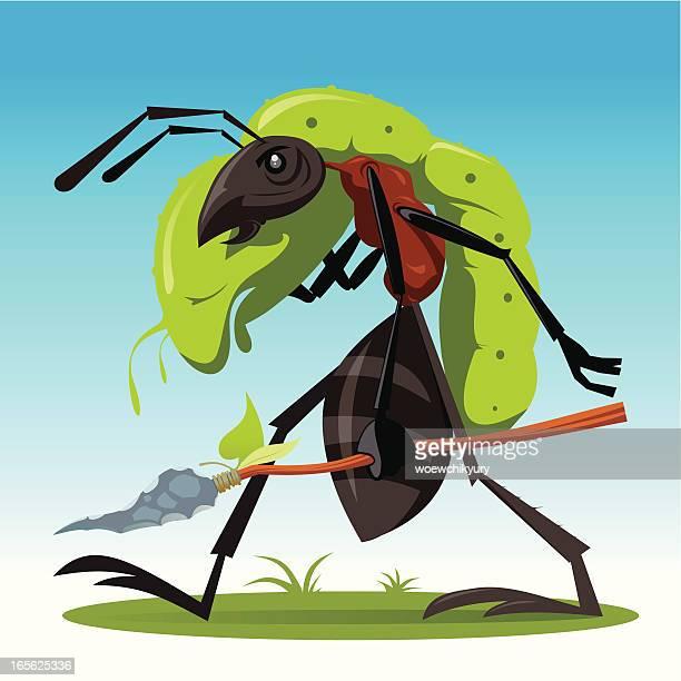 Formiga-caçador