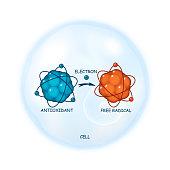 Antioxidant working principle abstract vector representation