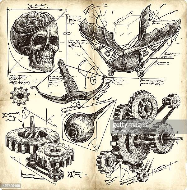 antique engineering drawings - anatomy stock illustrations