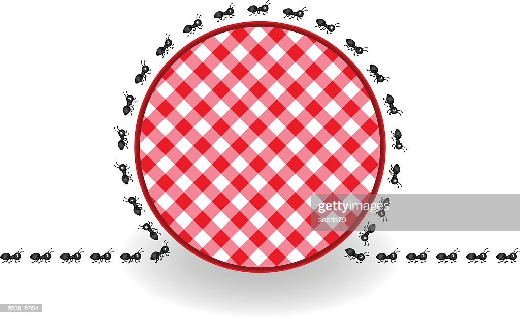 Ants around label picnic plaid