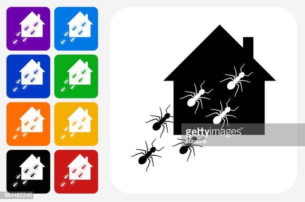 illustrations, cliparts, dessins animés et icônes de les fourmis à la maison icône carré bouton set - fourmi