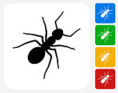 Ants Icon Flat Graphic Design