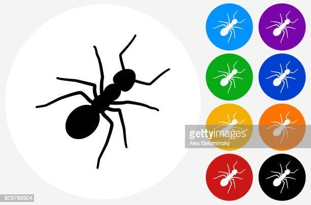 ilustraciones, imágenes clip art, dibujos animados e iconos de stock de ants icon on flat color circle buttons - hormiga