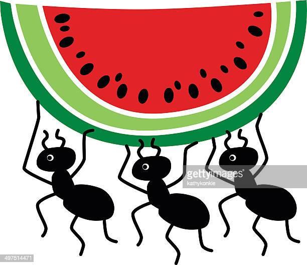 ilustraciones, imágenes clip art, dibujos animados e iconos de stock de ants robar sandía corte - hormiga