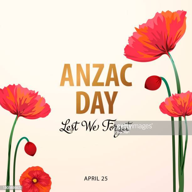 anzac day poppies - anzac soldier stock illustrations
