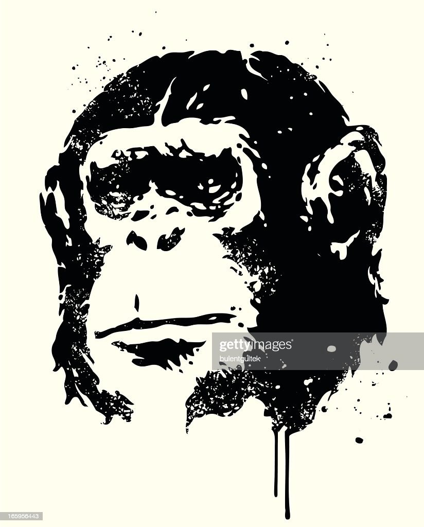 Ape : stock illustration