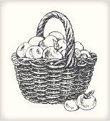 Apple basket drawing