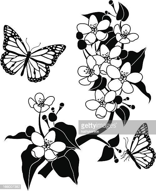 apple blossoms and monarch butterflies