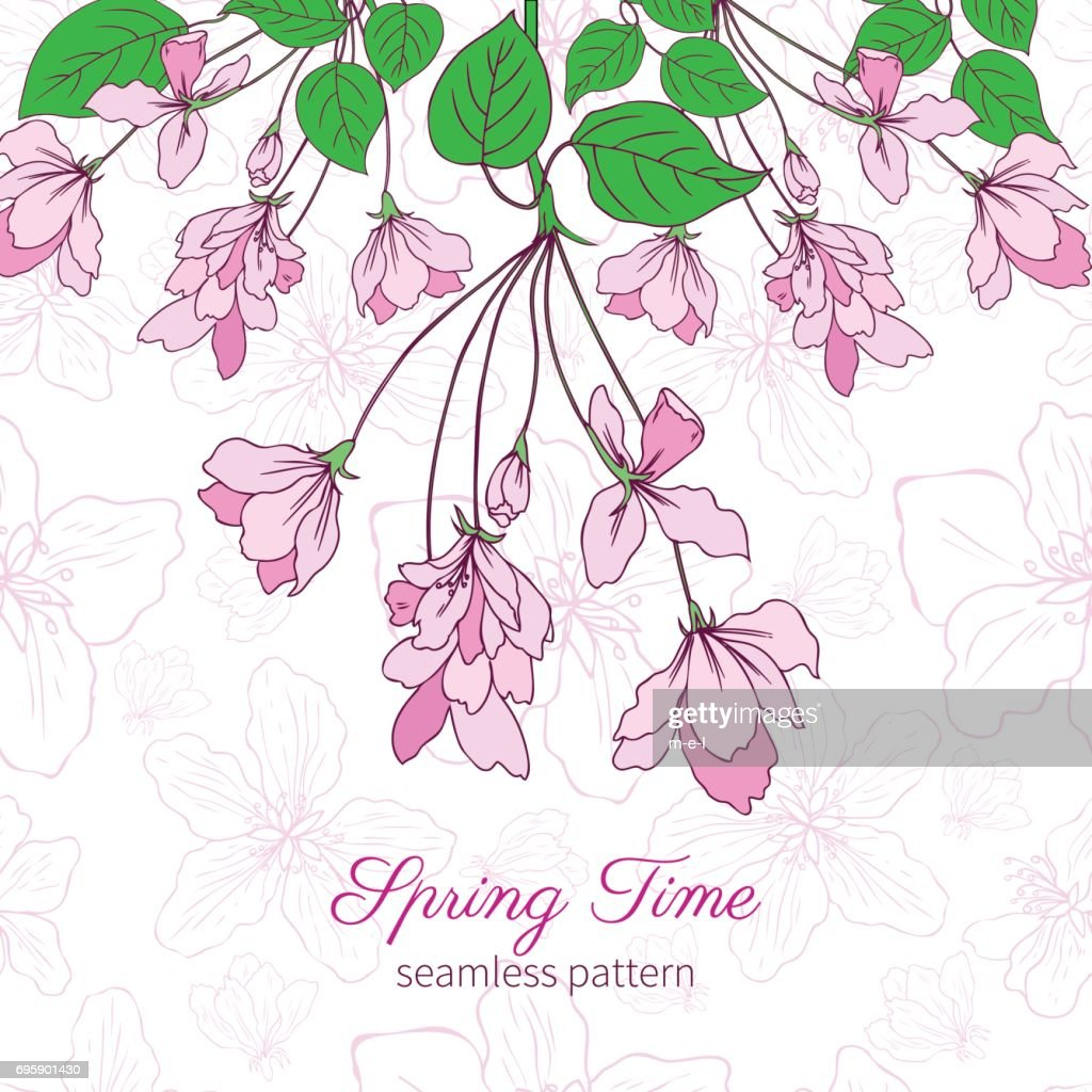 Apple flower blossom colorful hand drawn illustration isolated on pink background, seamless vector floral pattern sakura decorative frame for greeting card, package design cosmetic, wedding