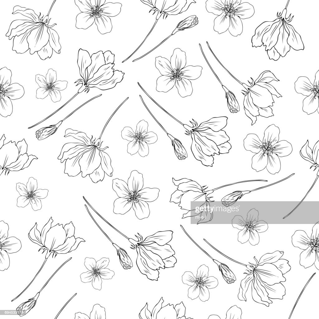 Apple flower blossom hand drawn isolated on white background, seamless vector floral pattern, sakura outline art for greeting card, package design cosmetic, invitation, wallpaper, decorative texture