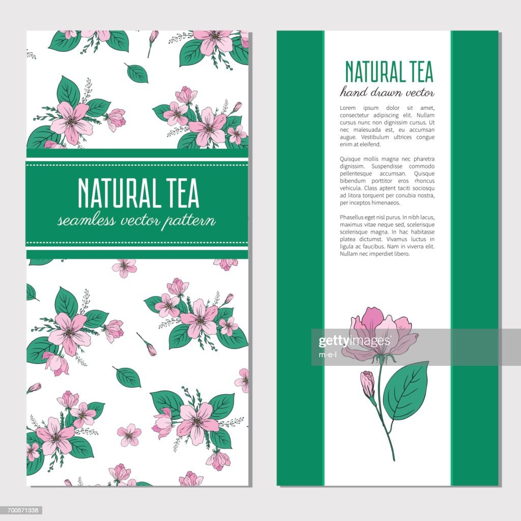 Apple flower blossoming hand drawn isolated on white background, seamless vector floral pattern, decorative sakura for greeting card, package design cosmetics,natural tea, wedding invitation, menu