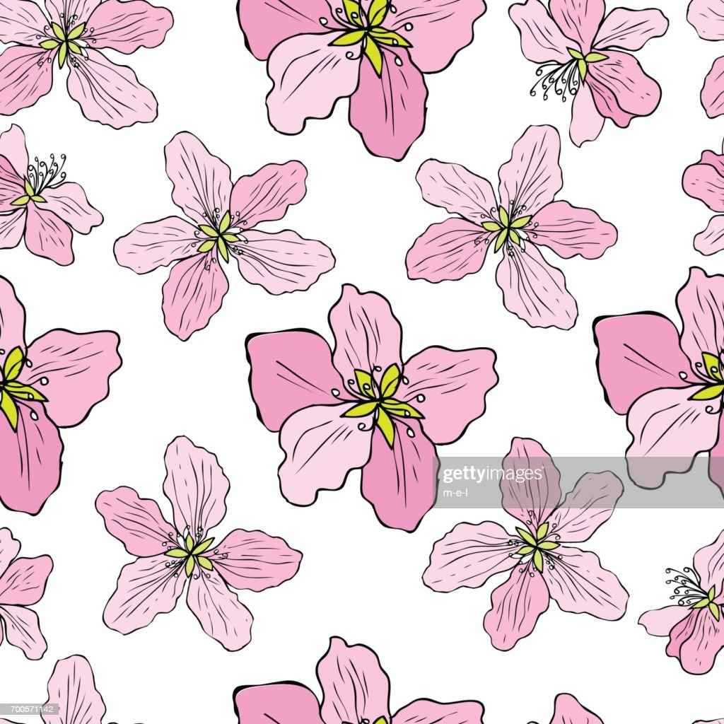 Apple flower tree blossom colorful botanical sketch hand drawn isolated on white, seamless vector floral pattern, pink sakura for greeting card, package design cosmetic, wedding invitation