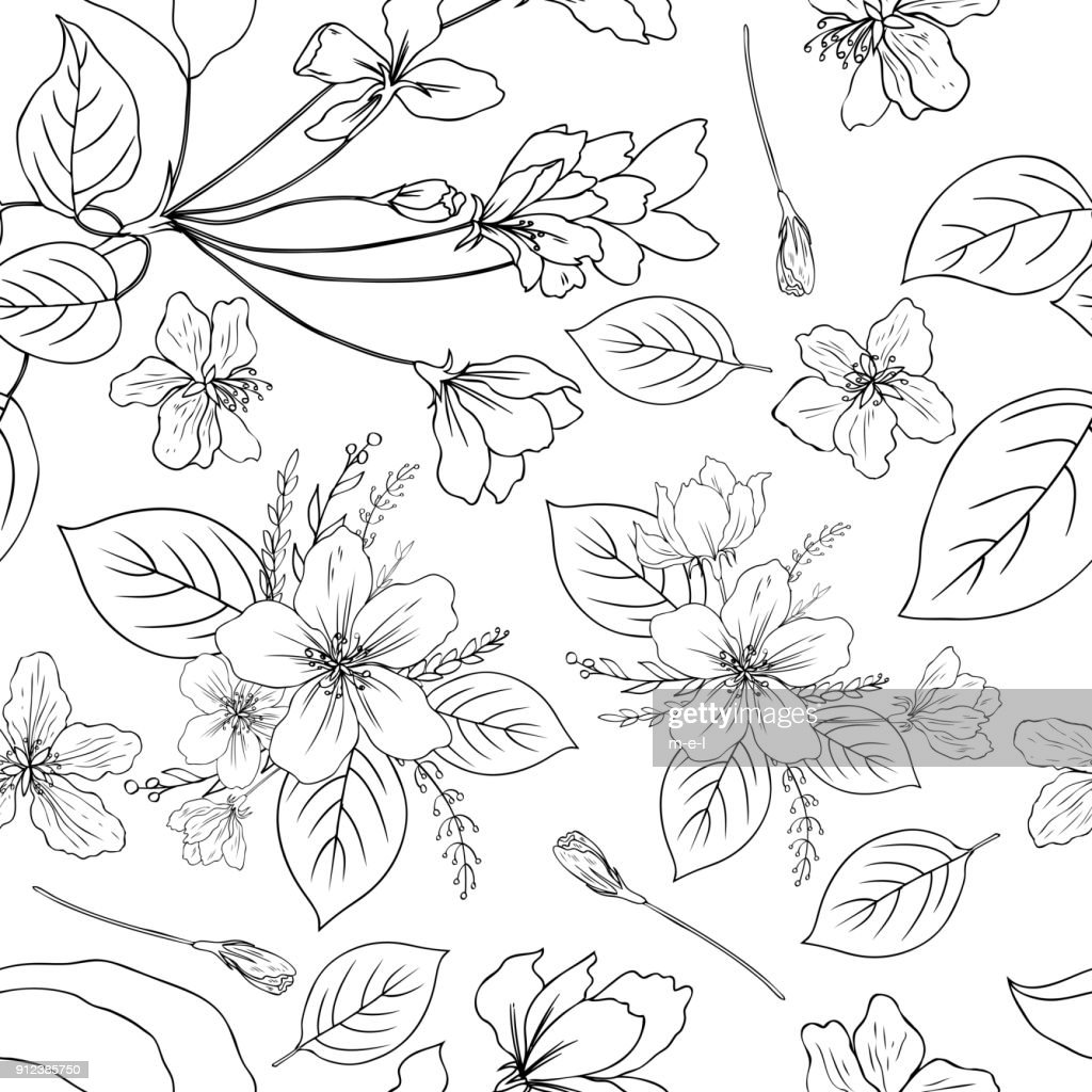 Apple flowers tree blossom, bud, leaf, branch botanical sketch hand drawn isolated on white, seamless vector floral pattern for greeting card, package design cosmetic, wedding invitations, wallpaper