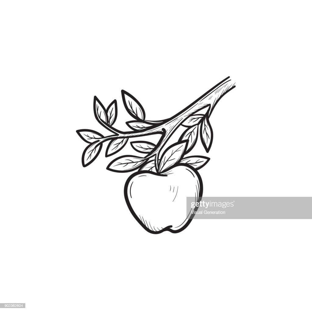 Apple harvest hand drawn sketch icon