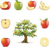 Apple Icons