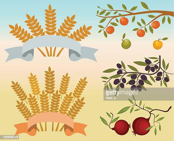 ilustraciones, imágenes clip art, dibujos animados e iconos de stock de manzana, oliva, granada ramas y trigo sheaves con cintas - espiga de trigo
